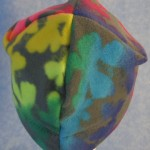 Band Cap in Rainbow Butterfly - back